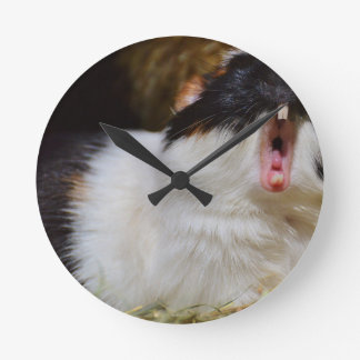 あくびをしているかわいいモルモット ラウンド壁時計