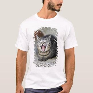 あくびをしている猫スウェーデン Tシャツ