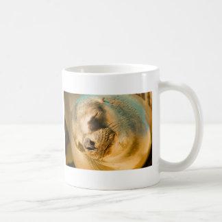 あしか コーヒーマグカップ