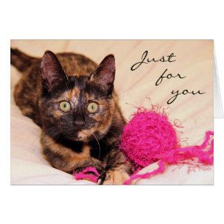 あなたのためのGreyfoot猫の救助Tortieはちょうど梳きます カード