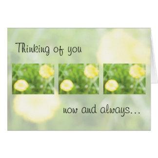 あなたのキンボウゲの…考えること カード
