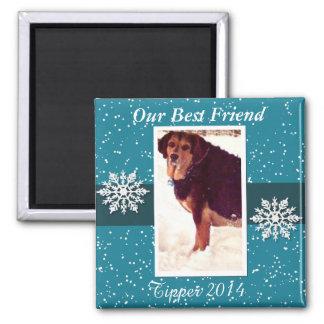 あなたのペット雪の記憶磁石 マグネット