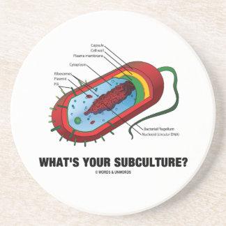 あなたの下位社会は何ですか。 (Prokaryoteの細菌) コースター