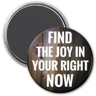 あなたの今磁石の発見の喜び マグネット