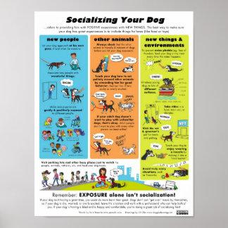 あなたの犬を社会的ニすること ポスター