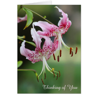 あなたの考えることかわいらしいピンクのオニユリの花柄 グリーティングカード