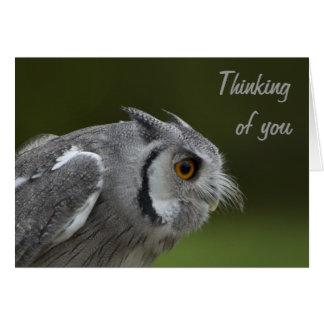あなたの考えることは-ベビーの灰色のフクロウを梳きます カード