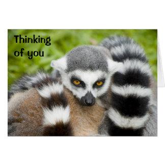 あなたの考えることは- LemurのStripeyのかわいい尾を梳きます カード