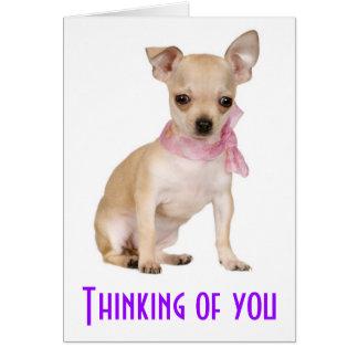 あなたの考えることチワワの小犬の挨拶状 カード