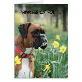 あなたの考えることボクサー犬の挨拶状 カード