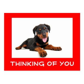 あなたの考えることロットワイラーの小犬の郵便はがき ポストカード