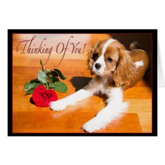 あなたの考えること無頓着なチャールズ王スパニエル犬の子犬 カード