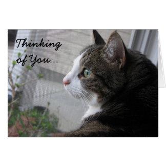 あなたの考えること空想にふける猫Notecard カード