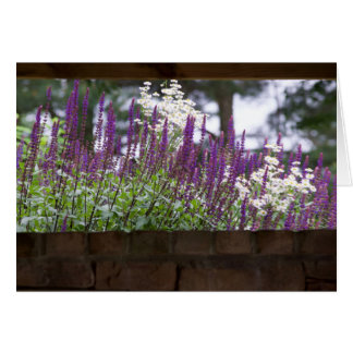 あなたの考えること、庭の壁 カード
