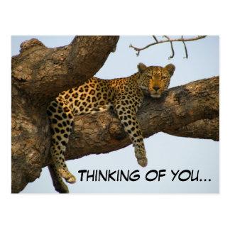 あなたの考えること(木のヒョウ) ポストカード
