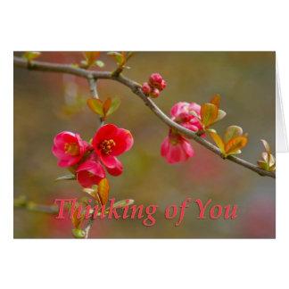 あなたの花盛りのマルメロの考えることは梳きます カード