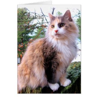 あなたの茶色のぶち猫のカスタムな考えること カード