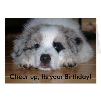 、あなたの誕生日元気づけて下さい! カード