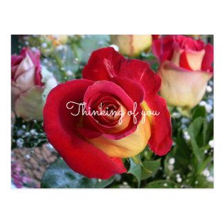 あなたの赤いバラの考えることカスタムなメッセージ ポストカード