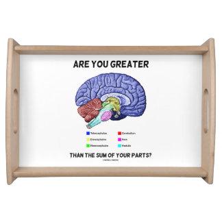 あなたの部品の合計より素晴らしいですか。 頭脳 トレー