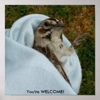 あなたは歓迎 ポスター