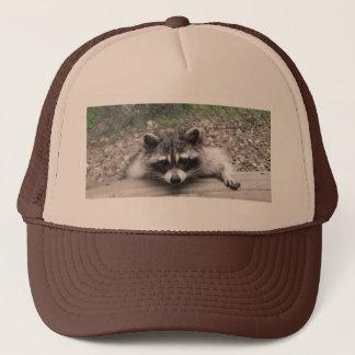 あらいぐまの帽子、アライグマの球の帽子 キャップ