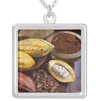 あるカカオの豆を含んでいるカカオのポッド シルバープレートネックレス
