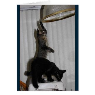 いけない子猫のバースデー・カード カード