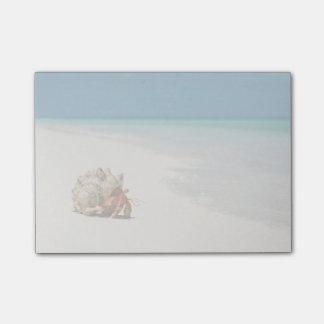 いちごのヤドカリ| Coenobita Perlatus ポストイット