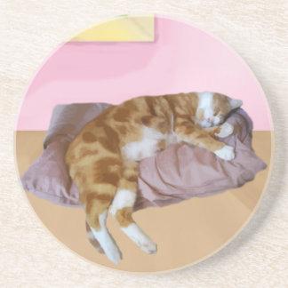 うたた寝しているかわいい猫 コースター