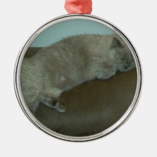 うたた寝のシャムのヒマラヤ猫、ギフト、装飾 メタルオーナメント