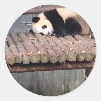 うたた寝のパンダ ラウンドシール