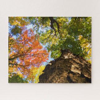 うなり声からの秋の木 ジグソーパズル