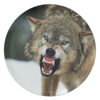 うなるオオカミ プレート