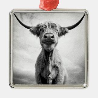 うわーMesotintのスタイルの芸術の写真撮影 メタルオーナメント