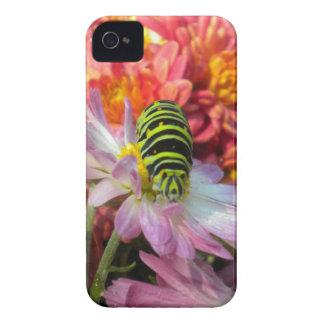 おせっかいな幼虫のブラックベリーのはっきりしたな箱 Case-Mate iPhone 4 ケース