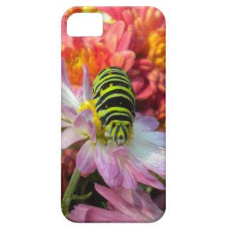 おせっかいな幼虫のiPhone 5の場合 iPhone SE/5/5s ケース