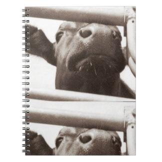 おせっかいな牛 ノートブック