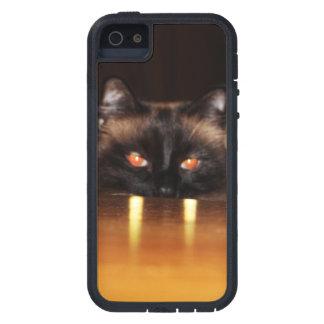 、おもしろいかわいい、吸血鬼猫 iPhone SE/5/5s ケース
