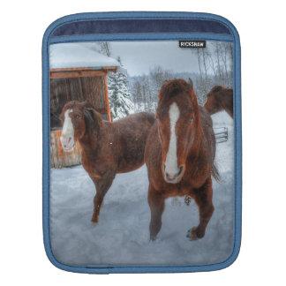 おもしろいで艶かしい種馬および好まないロバの馬 iPadスリーブ