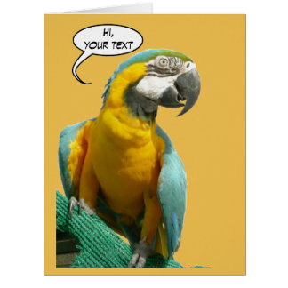 おもしろいなおしゃべりオウムCust。 文字の挨拶状 カード