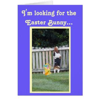 おもしろいなイースターカードw/Bunnyのバセット犬の捜索 カード