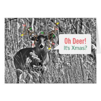 おもしろいなクリスマス-クリスマスの照明を持つシカ カード