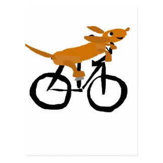 おもしろいなダックスフントの乗馬の自転車 ポストカード