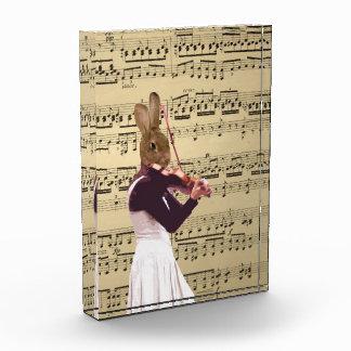 おもしろいなバニーウサギのバイオリン奏者 表彰盾