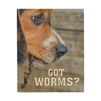 おもしろいなビーグル犬の子犬によって得られるみみずか。 ウッドウォールアート