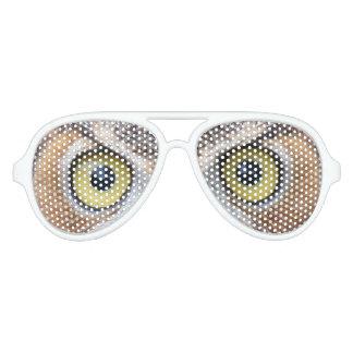 おもしろいなフクロウの目のサングラス アビエーターサングラス