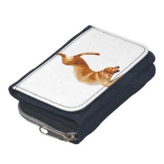 おもしろいなラブラドル-犬のヨガ-ゴールデン・リトリーバー