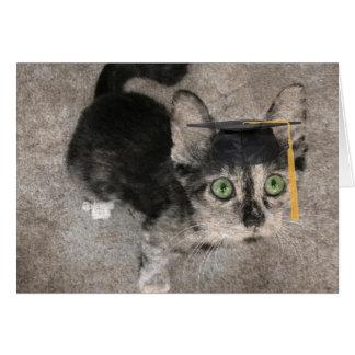 おもしろいな卒業、目を見開いた子ネコ カード