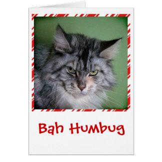 おもしろいな猫のクリスマスの挨拶状 グリーティングカード